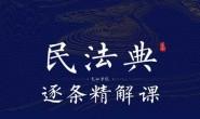 《民法典逐条精解课》视频课件全集下载链接
