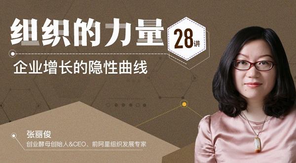 张丽俊组织的力量28讲 视频在线全集下载