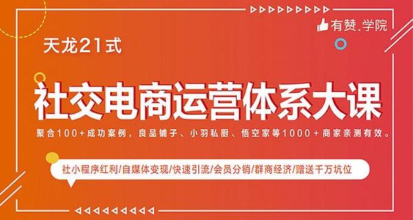 天龙21式《社交电商运营体系大课》视频资料全集下载课程